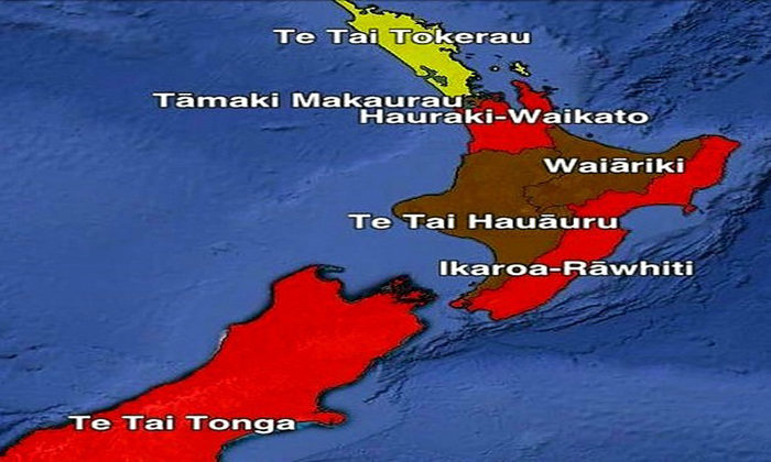 Dr Rawiri Taonui Election 2020 | The Battle for the Māori Electorates 14 October