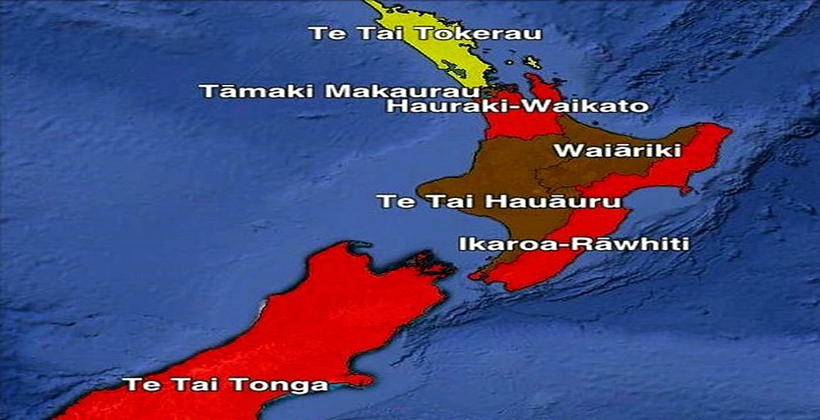 Dr Rawiri Taonui Election 2020   The Battle for the Māori Electorates 14 October