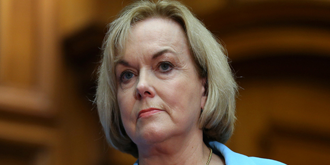 Judith Collins -National Party leader