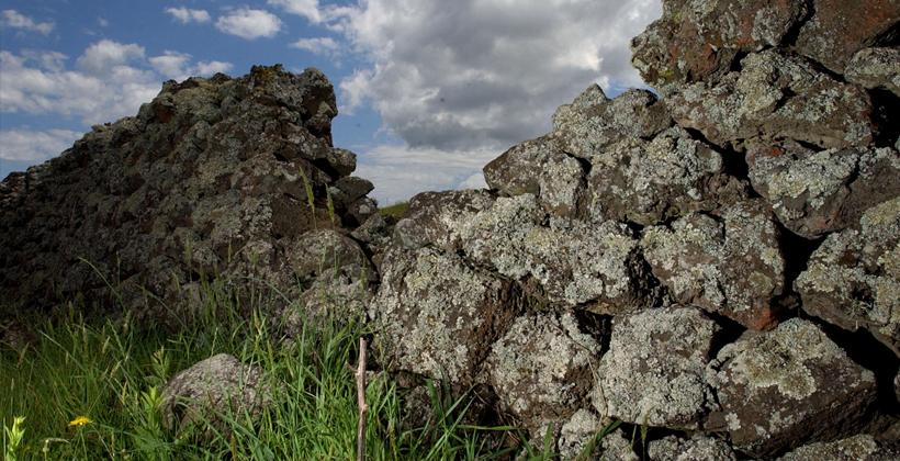 Ihumatao heritage high in deal landscape