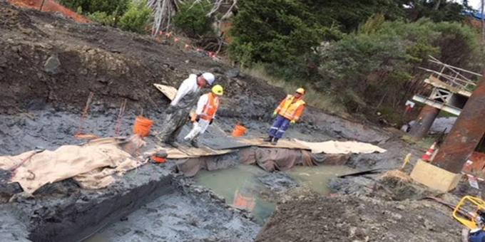 Motorway work uncovers waka