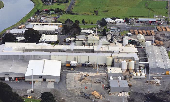 Whakatane Mill workers ready to take hit to save jobs