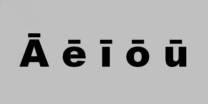 Māori language option an economic booster