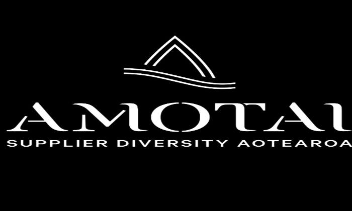 Maori procurement initiative goes national
