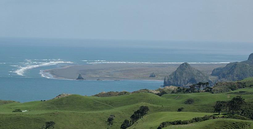 Ngati Te Ata leads Awhitu native replanting