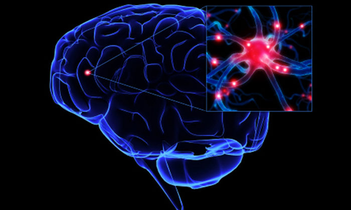 Courts look at brain injury