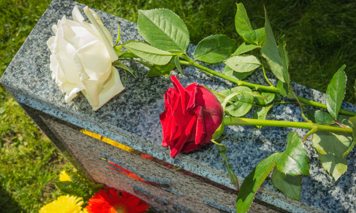 Cases fall but COVID deaths continue