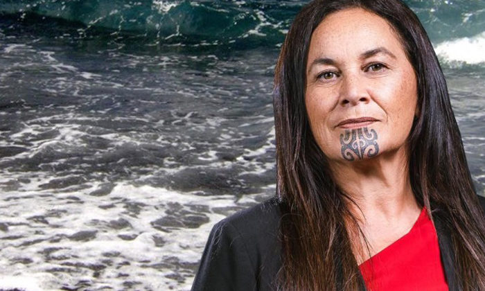 Maori Party takes aim at colonial monuments