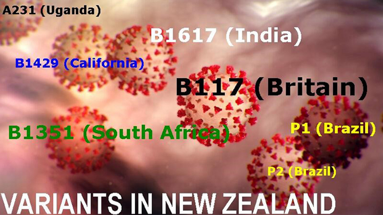 Dr Rawiri Taonui Covid Maori | Seven Variants in New Zealand and Low Rate of Maori Vaccination