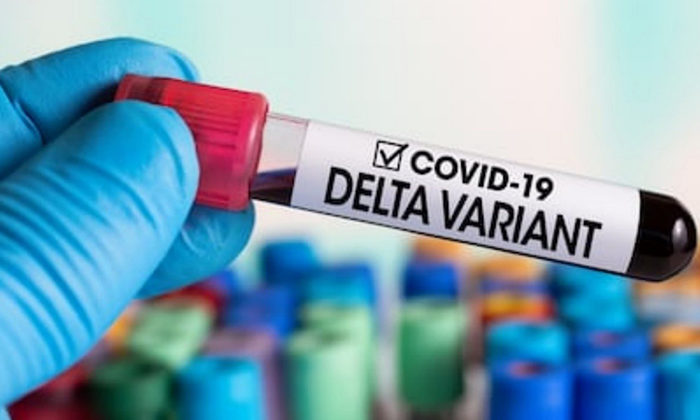 Dr Rawiri Taonui | Covid-19 Māori | How the Government ignored the warning signs of a Delta OutBreak