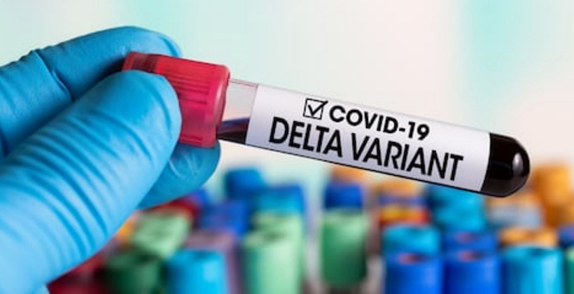 Dr Rawiri Taonui | Covid-19 Maori | How the Government ignored the warning signs of a Delta OutBreak