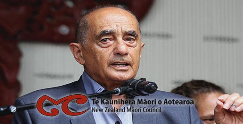 Academics to boost Māori Council policy