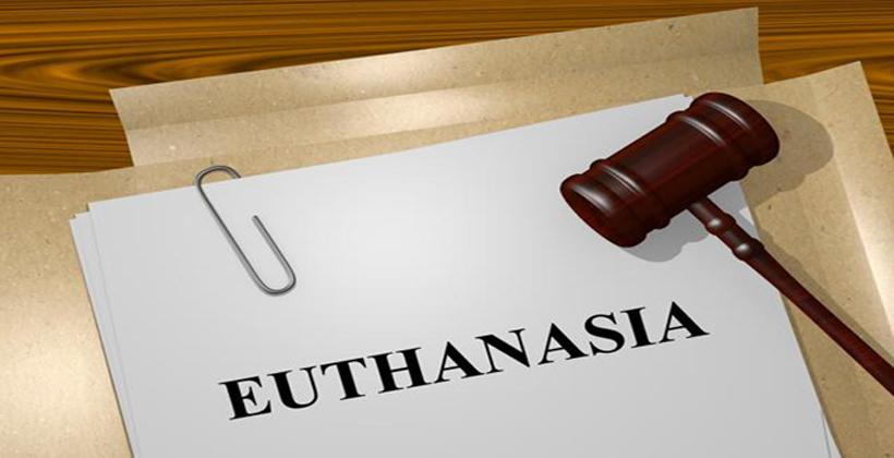 Euthanasia law threat to Maori