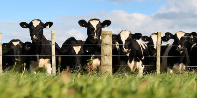 Intense farming a long term threat