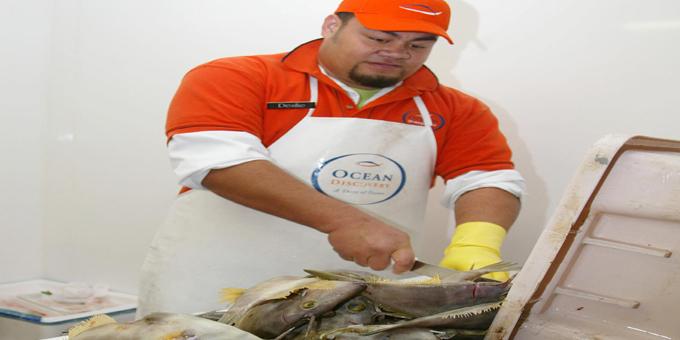 Fish filleting not paying