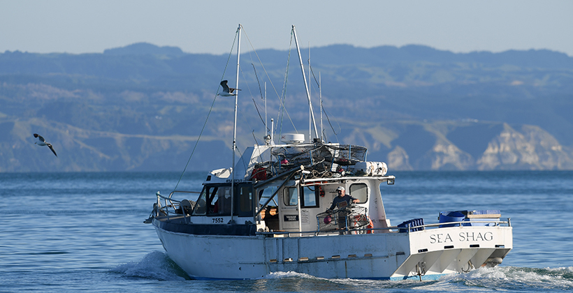 Cameras on boats and new dump rules to fix fisheries