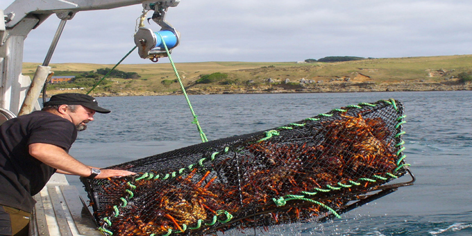 Foreign fishers benefit from Maori settlement