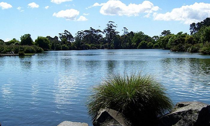 Water for Māori development sought