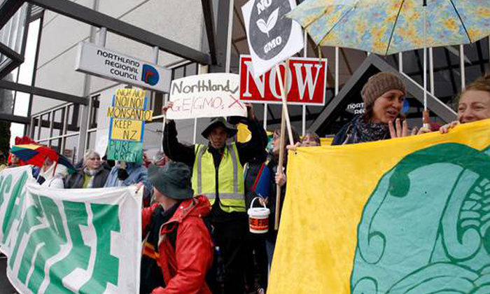 Northland Regional Council takes GMO stand