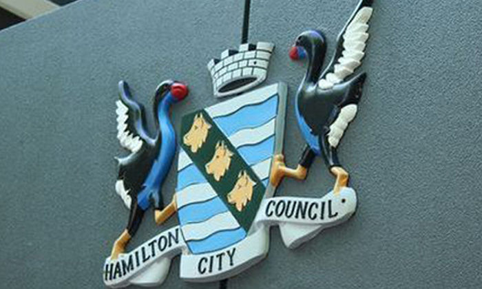 Hamilton Council ducks Maori ward challenge