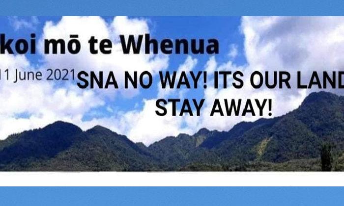 Leave Māori land alone says Māori Party