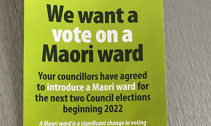 Councillor says Maori seat petition con job