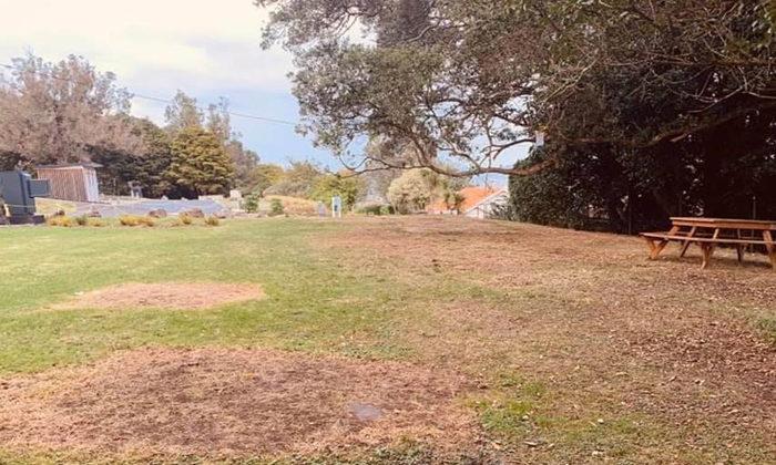 Public Reserves Act trumps treaty settlement for tree huggers