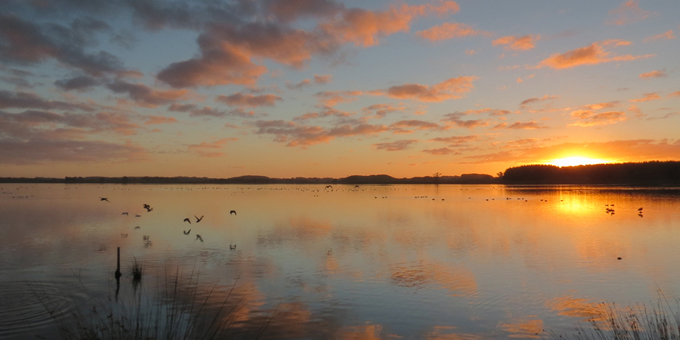 Iwi research tracks lake pollution
