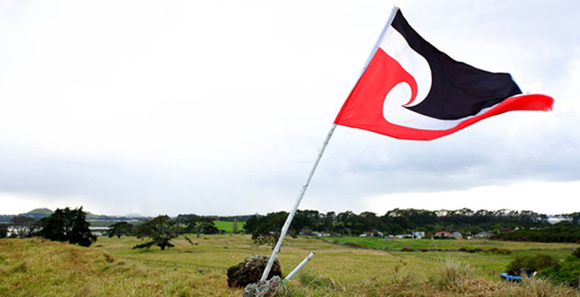 Right structure needed for Ihumaatao decisions