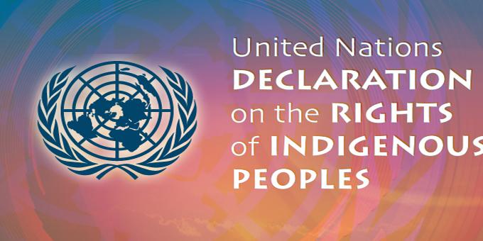 Rangatahi model delegation to UN