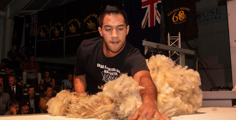 Te Waipounamu strong showing in Golden Shears