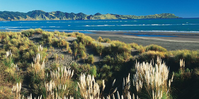 Mana whenua want say on harbours