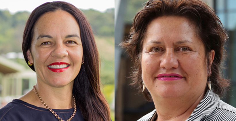 Community links critical for Pouhere Taonga board