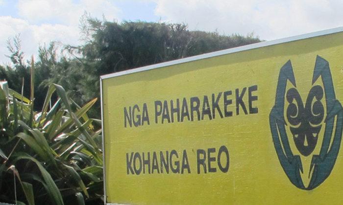 Kohanga Reo says too risky to reopen