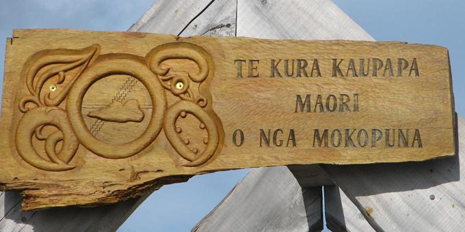 Kei te aronui ngā kura Māori ki ngā painga ō punaha kē