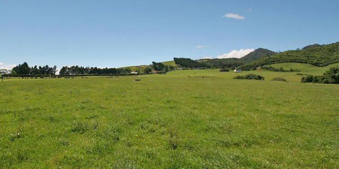 Kei mua i te aroaro o Paaremata te pire whakahou i te ture whenua maori.