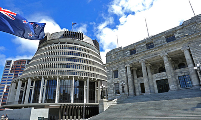 Petitions call for rapid action on Maori wards