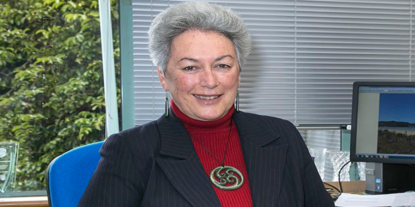 National Iwi chairs spokersperson