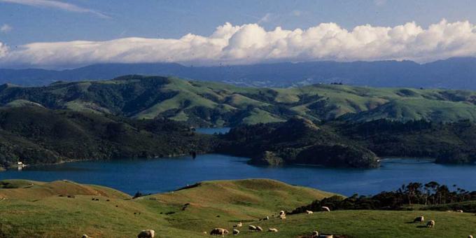 Ngāti Pukenga signs treaty deed