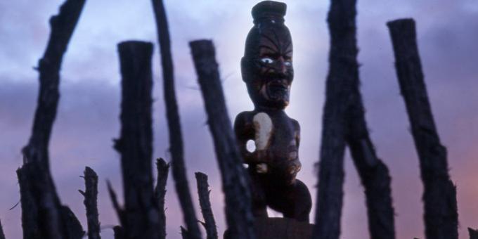 Partnership school defends Maori model