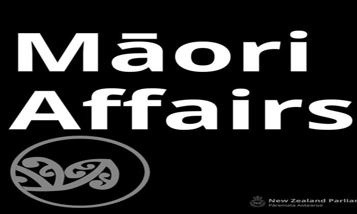 Fast track for Maori wards bill