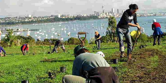 Land bill dispossessing urban Maori
