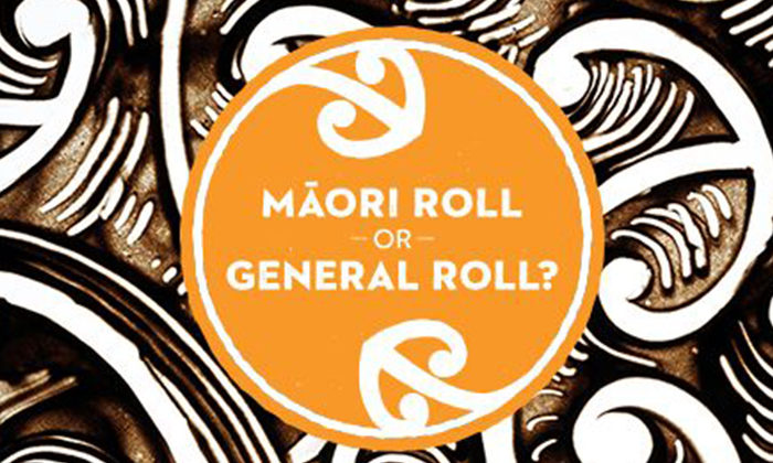 Maori Party wants continual Maori option