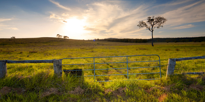Flavell defends silence on land bill
