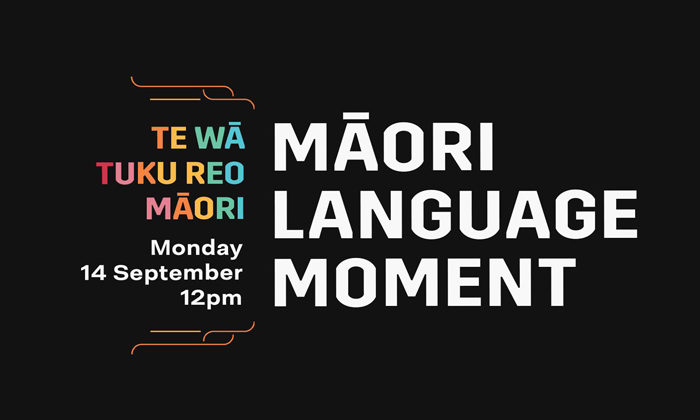 Million target for Maori language moment
