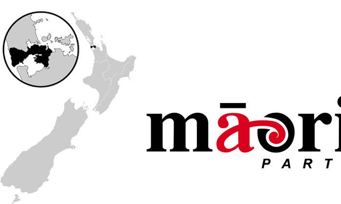 Tamaki Makaurau chance for Maori Party pick up
