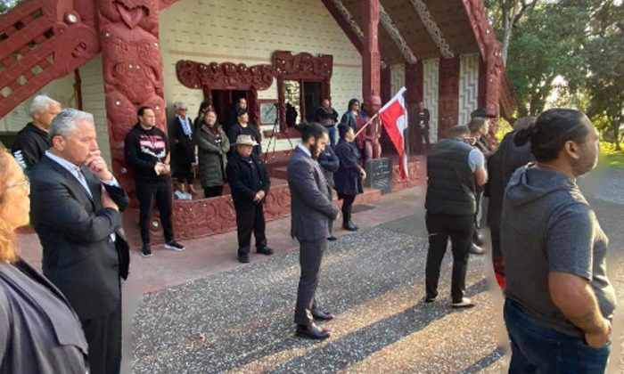 Opinion: The Maori Party are right - our elections are racist!