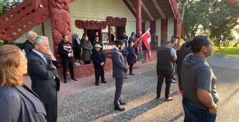 Treaty claim reset in Maori Party plan