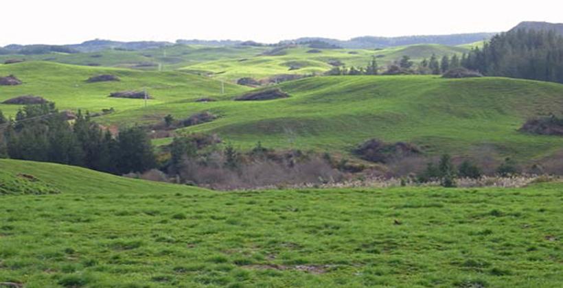 Māori land law change still needed