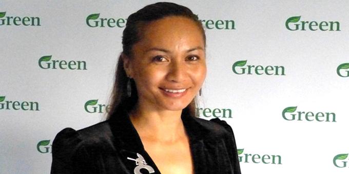 Davidson makes case for Green co leader spot